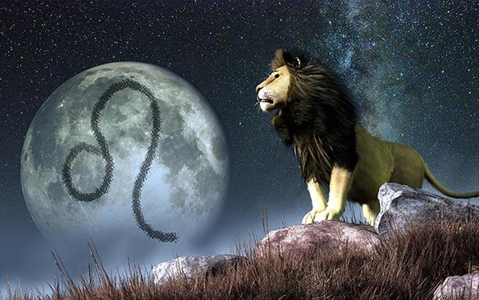 Tử vi hàng ngày cung sư tử hay và chuẩn nhất